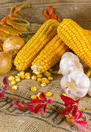 Autumn harvest Stock Photo - 11205282