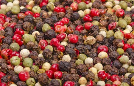coloured pepper photo
