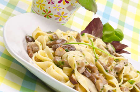 Tagliatelle with tail steak stripe and champignons photo