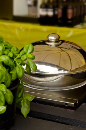 pots and basil photo