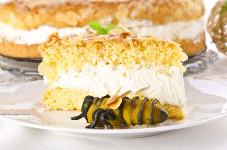 flat cake with an almond and sugar coating and a custard or cream filling Stock Photo - 14433776