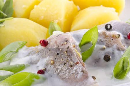 Cream herring  photo