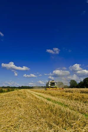 Combine harvester Stock Photo - 15217336