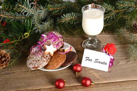 milk and cookies for santa photo