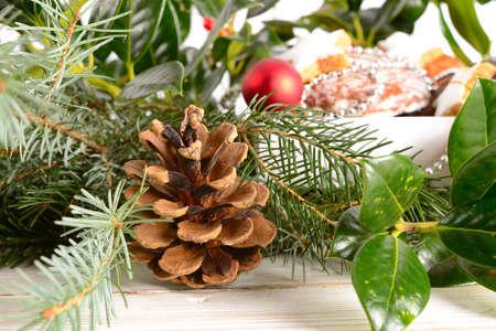 conifer: Conifer cone Stock Photo