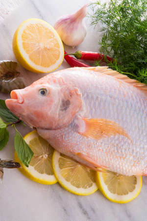 Freshness reddens the Nile Tilapia fish  Oreochromis niloticus  photo
