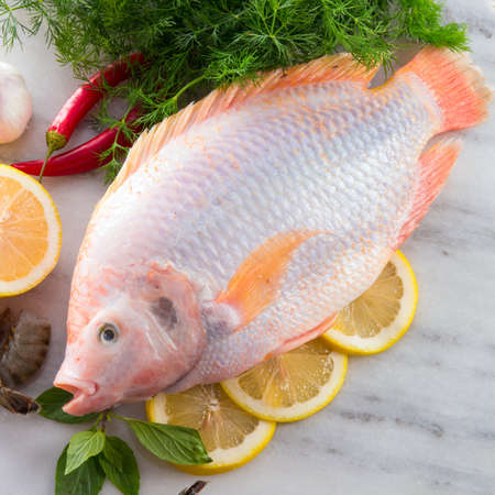 Freshness reddens the Nile Tilapia fish  Oreochromis niloticus