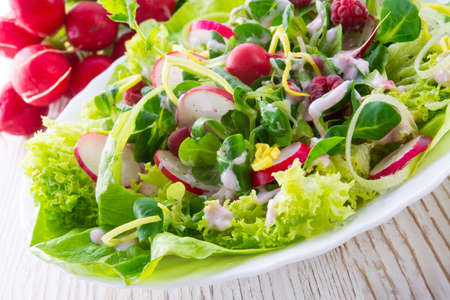 fresh salad Stock Photo - 18152190