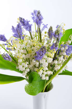 lily of the valley: Lily of the Valley and Scilla Stock Photo