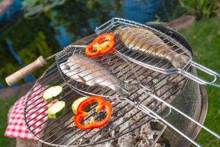 Grilled trout photo