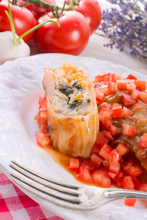 pflanze: Vegetarian cabbage rolls with spinach and salsa  Stock Photo