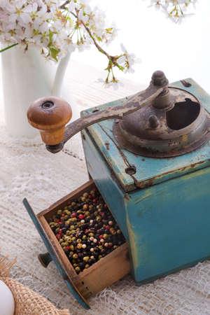 pepper mill Reklamní fotografie