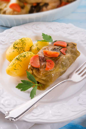 Cabbage roll photo