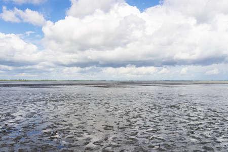 german north sea region: Mudflat