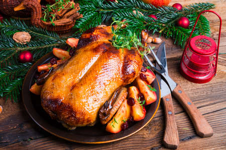 christmas turkey: Christmas duck