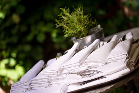 silverware: napkins with silverware pouch