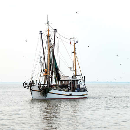 shrimp boat: North Sea shrimp boats Stock Photo