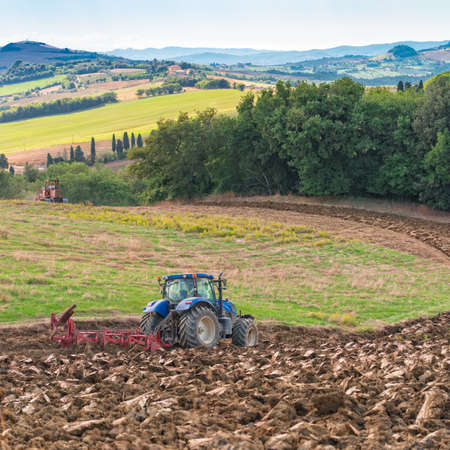 field work: Field work in Tuscany Stock Photo