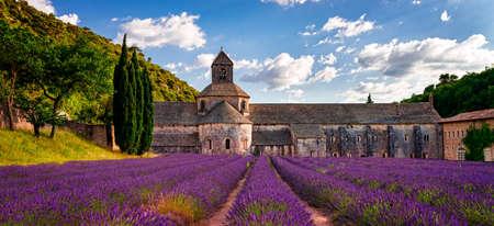 the abbey: abbey
