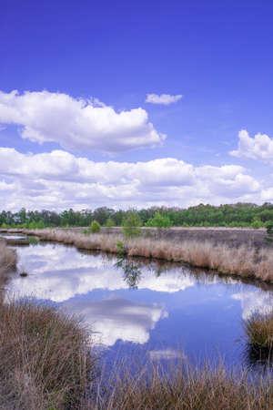 moor: moor landscape Stock Photo