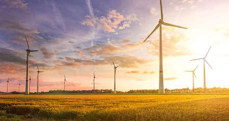 windturbine veld Stockfoto