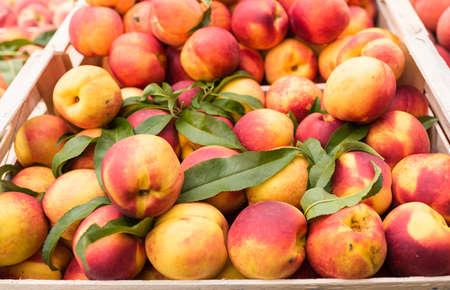 weekly market: Weekly market Tuscany - apricot