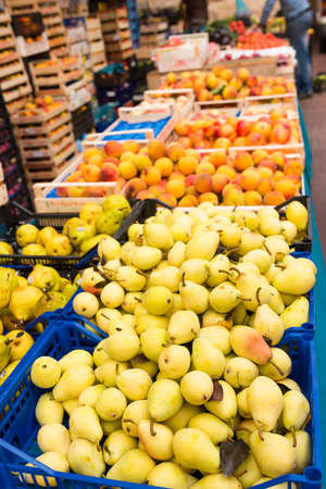 weekly market: Weekly market Tuscany - appel