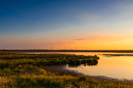 wetland conservation: North German moor area