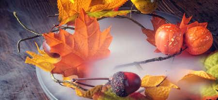 autumn colour: autumn leaves in the mist Stock Photo