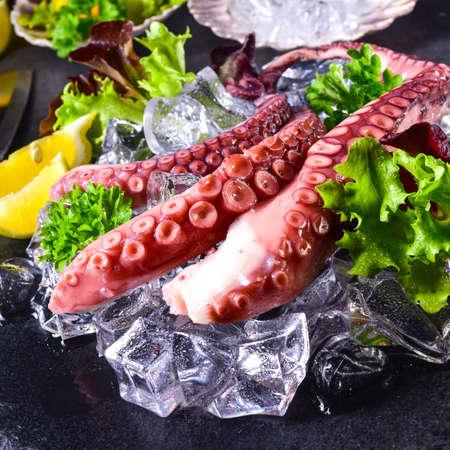 raw octopus on the ice Stock Photo