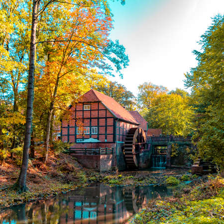 Forest in autumn and a beautiful and picturesque watermill Фото со стока