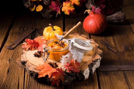a delicious autumnal creamy hokkaido pumpkin puree 免版税图像