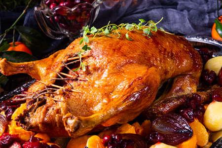 roast duck with potato dumplings and plums Reklamní fotografie