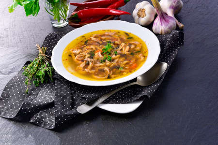 Traditional tripe soup in polish style with beef and vegetables 版權商用圖片