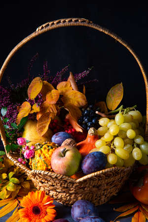 autumnal cornucopia in round basket Stok Fotoğraf