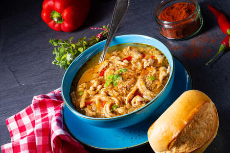 flaczki - fresh and spicy tripe soup with herbs 版權商用圖片