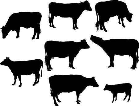 koeien en kalf 2 silhouet Stock Illustratie