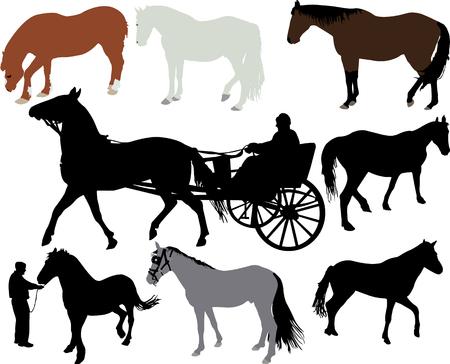 horses silhouettes Ilustração