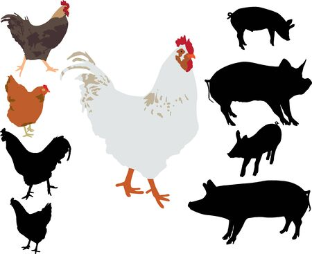 rooster chicken pigs silhouettes