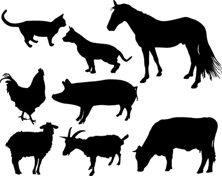 animal silhouette: farm animals