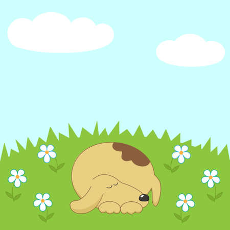 asleep: Dog sleeping on the meadow vector Illustration