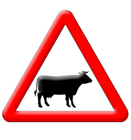 Cow crossing traffic sign isolated over white background photo