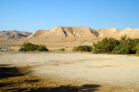 judaean desert: Traveling in Israel desert, colored wallpaper with Judean mountains and hills
