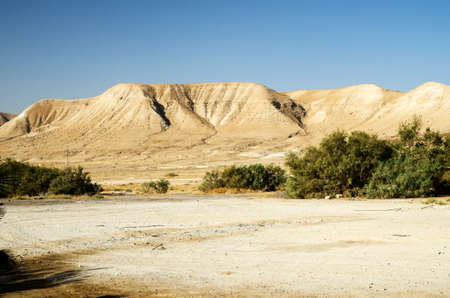 judaean desert: Judaean mountains in desert, Israel stone deserts landscape with rocks and hills