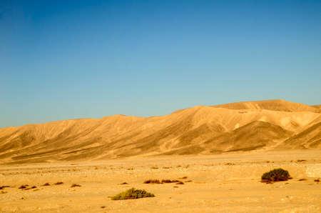 desierto del sahara: dunas de arena del desierto del Sahara