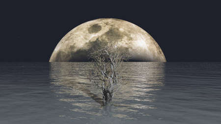 Full moon and a tree in the ocean, conceptual 3D illustration background, lomely tree in the middle of nowhere