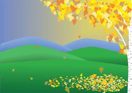 autmn: autmn birch Illustration