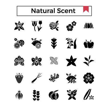 Natural scent glyph icon set. Illustration