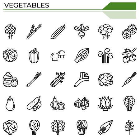 Vegetables icon set for food and plants website, presentation, book.