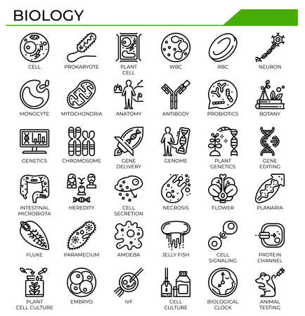 Biology icon set for science study and education website, presentation, book. Ilustrace